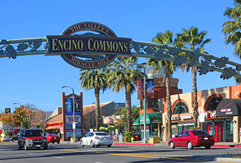 Encino group transportation services
